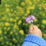 长沙市妇幼保健院孕检指南